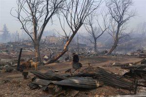 Une nature dévastée par les incendies.
