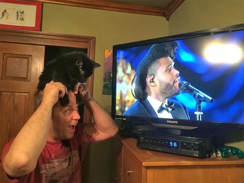 Est-ce un animal sur la tête du chanteur ?