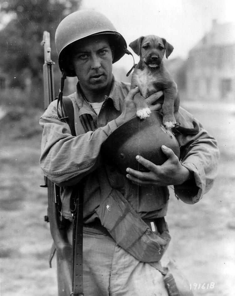 Le soldat Joseph E. Day porte un chiot, la mascotte du régiment nommé « Invasion ».
