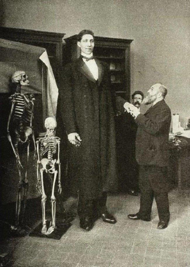 Fyodor Makhnov, le plus grand homme avec ses 2,85 m pour 182 kg en 1902