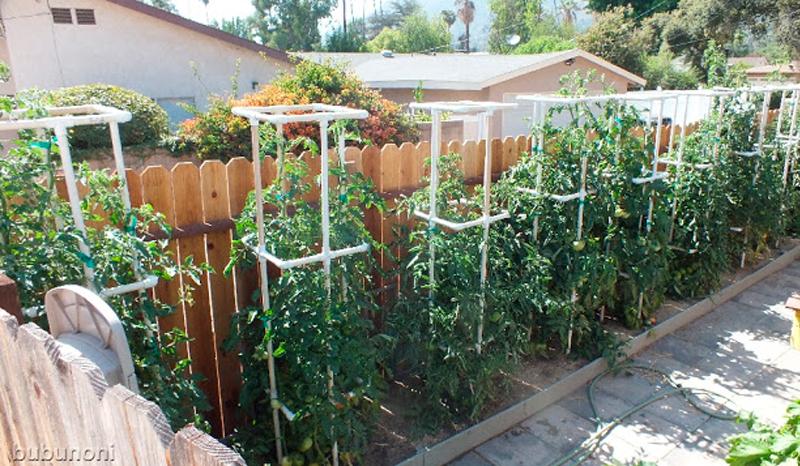 Créer un treillis pour soutenir des plantes comme les vignes, et pourquoi pas un système d'irrigation pour ces dernières à l'aide de tubes en PVC.