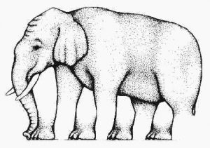 Combien de jambes a cet éléphant ?