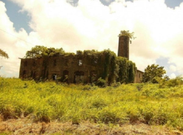 Distillerie abandonnée, Barbade
