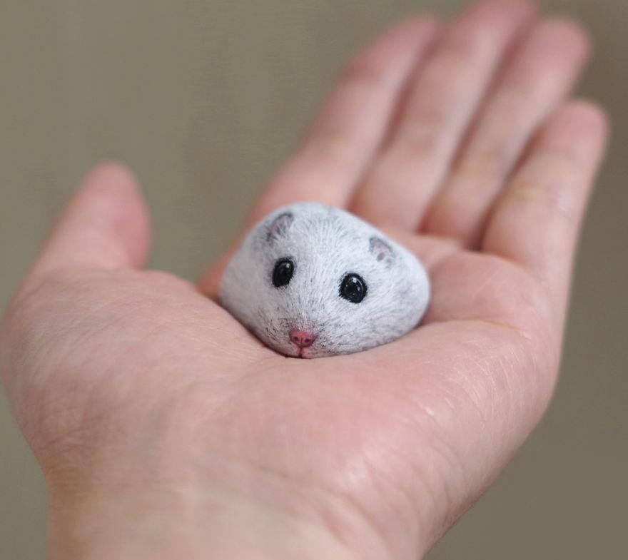 Un hamster au regard attendrissant