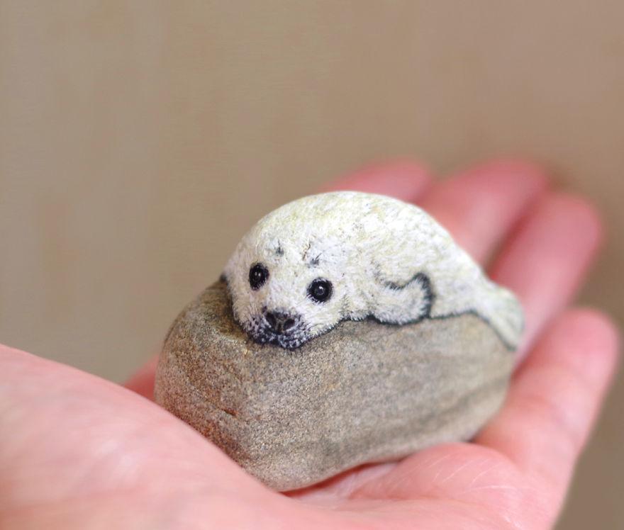 Un phoque blanc sur un rocher