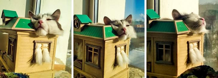 Sa petite maison…