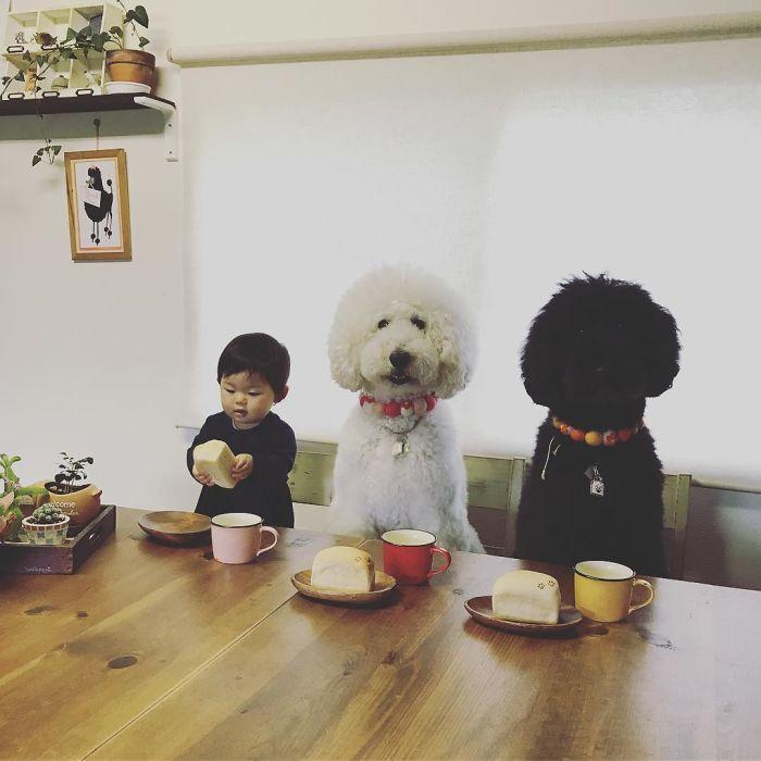 Le petit déjeuner avec un ami