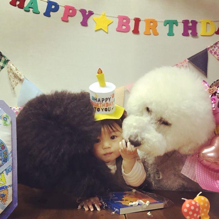 Joyeux anniversaire……