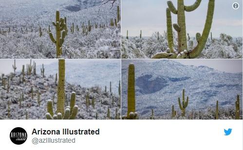 Photo de Arizona Illustrated