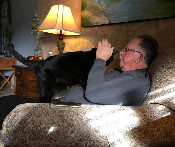 Mon papa a dit NON à un chat à la maison. Maintenant, il dit NON à le voir partir!!!