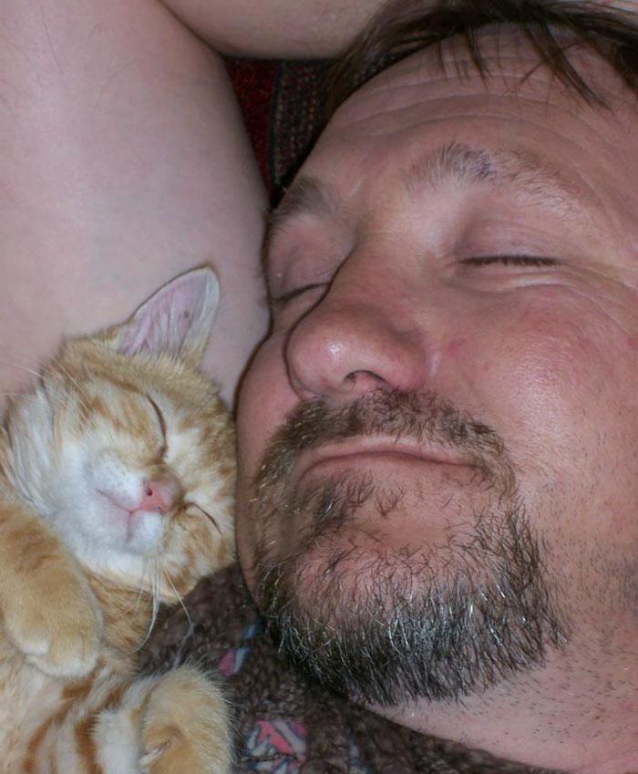 """Première qu'a dit mon papa: """"Ramène le chaton je n'en veux pas à la maison"""""""