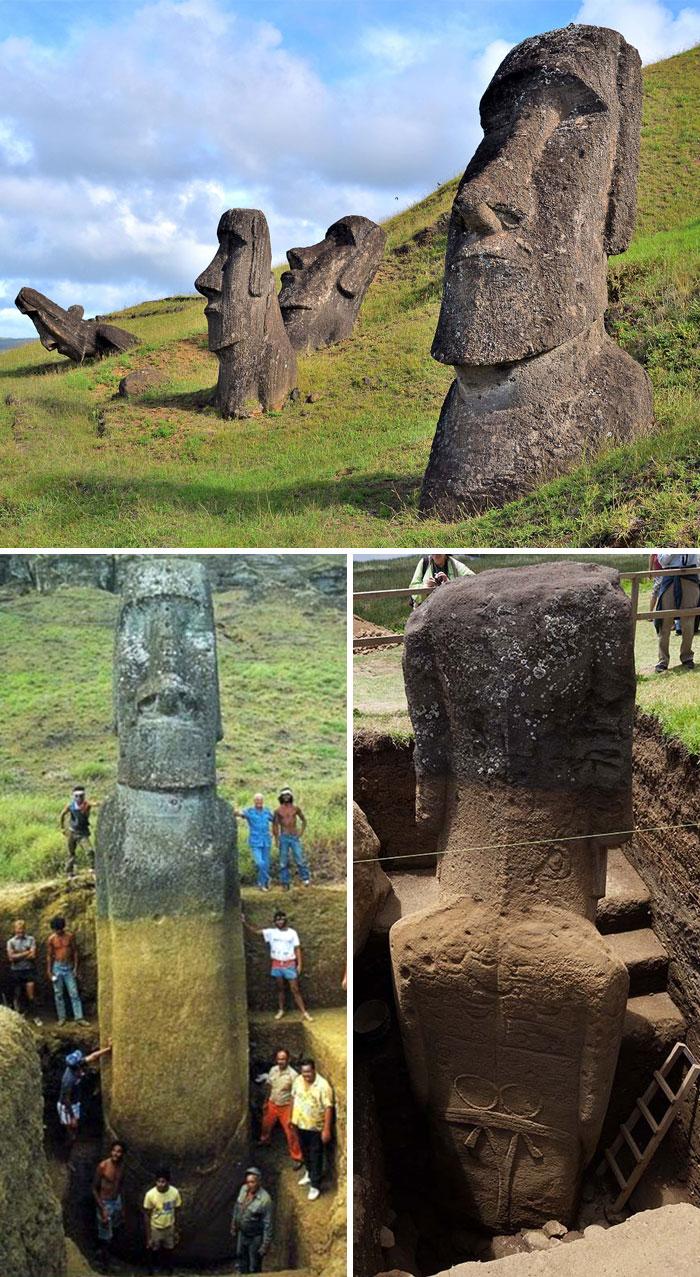 Les statues de l'île de Pâques ont un tronc