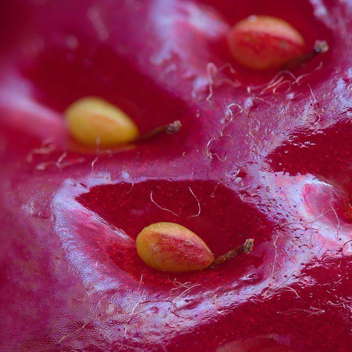 Le dessus d'une fraise